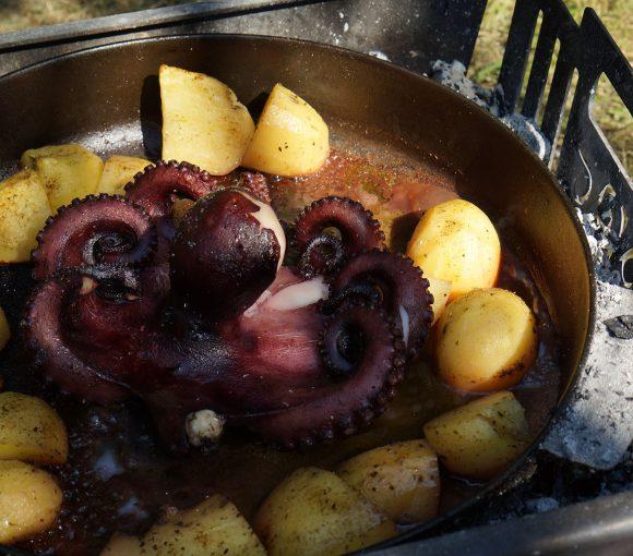 hobotnica izpod peke 6