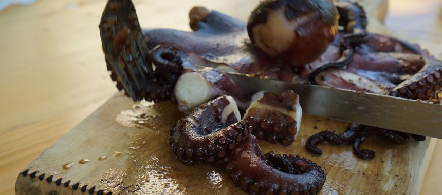 Hobotnica izpod peke